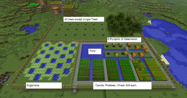 Farm Layout Minecraft Farm Minecraft Farm Layout