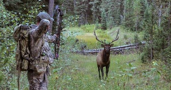 Elk101 Com Presents Wyoming Elk Hunting Film Wyoming Elk Hunting Elk Hunting Hunting
