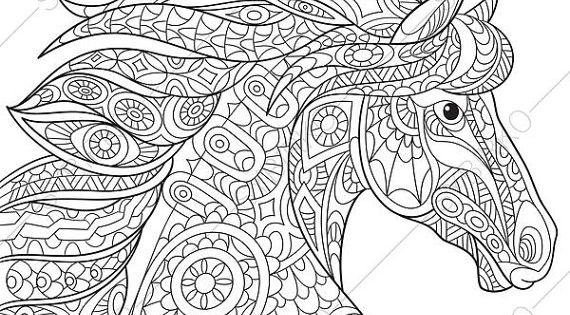 Horse Adult Coloring Page Zentangle Doodle By