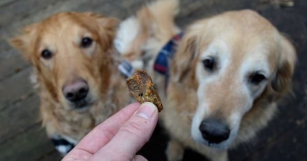 Win 1 Of 2 Salmon Dog Treat Prize Packs From Alaska Wild Treats Sweepstakes Ifttt Reddit Giveaways Fre Salmon Dog Treats Diy Dog Treats Dog Treats