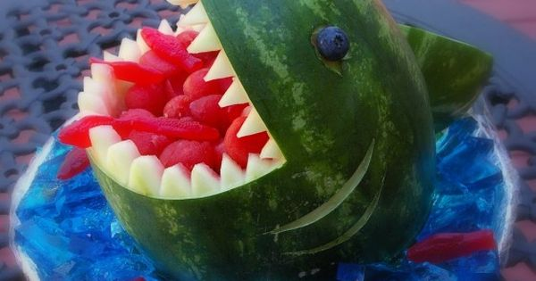 Watermelon shark attacking a school of Swedish fish