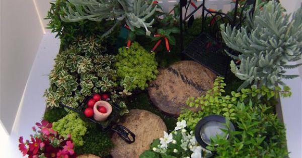 miniatuur tuin - miniature garden - fairy garden. *Just beautiful!