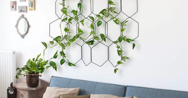 Plante d 39 int rieur 15 id es originales pour mettre du v g tal design - Plante d interieur design ...