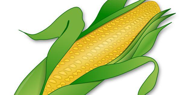 Corn Clipart Corn Clip Art Vector Clip Art Online