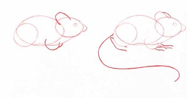 Click here for a full list of all the animals you can for How do you draw a mouse