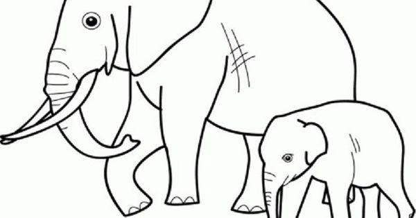 Mewarnai Gambar Gambar Warna Dan Binatang Buas