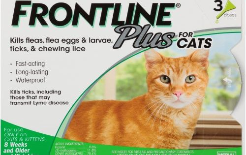 Frontline Plus Flea Tick Prevention For Cats 3 Monthly Treatments See Package Frontline Plus For Cats Cat Fleas Tick Treatment For Cats
