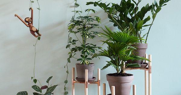 dschungel zu hause diy pflanzenst nder aus kupfer und holz kupfer pflanzen und pflanzenst nder. Black Bedroom Furniture Sets. Home Design Ideas