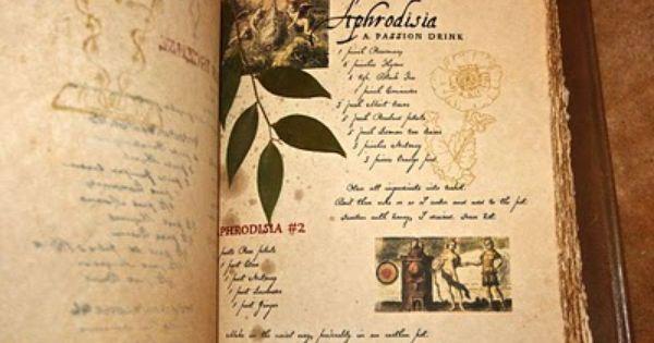 Octoberfarm The Original Practical Magic Spellbook Magic Spell Book Book Of Shadows Practical Magic Movie