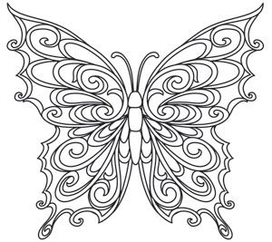 Baroque Natura Butterfly Butterfly Coloring Page Quilling Patterns Coloring Pages