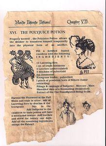Livre De Potion Harry Potter : livre, potion, harry, potter, Potion, Petit, Monde, Celui, Harry, Potter, Accessoire, Potter,, Noël,, Bricolage