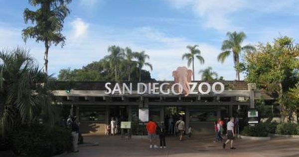 Picture Of Zoo Entrance San Diego Zoo Prices San Diego Zoo Tickets And Discounts San Diego Zoo Visit San Diego Zoo Tickets