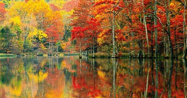 Autumn in Beavers Bend State Park, Southeast Oklahoma
