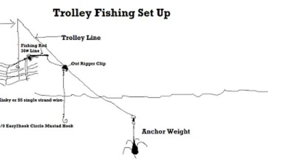 saltwater fishing rigs beginners google search rigs