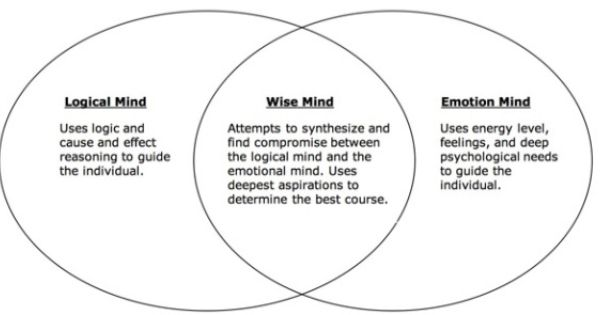 Image Result For Dbt Mindfulness Exercises Venn Diagram Dbt