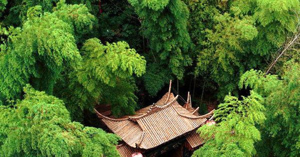 ♂ Green life green living Hidden temple surround by green trees Japan