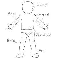 Projekt Das Bin Ich Und Mein Koerper Kindergarten Und Kita Ideen Korper Vorschule Projekte Im Kindergarten Sprachforderung Kindergarten