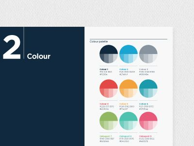 Colour Palette Brandbook Brand Book Brand Color Palette Brand Guidelines