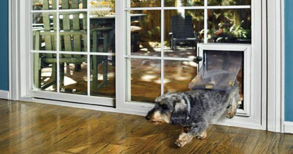 Pin By Kim Ngo On Dog Door Pet Doors French Doors Dog Door