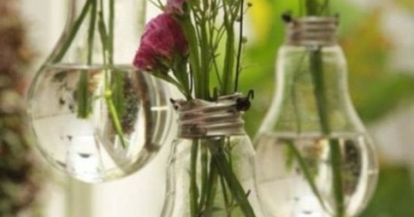 Light bulbs re-purposed into hanging flower vases. DIY flowers gardening lightbulbs recycling