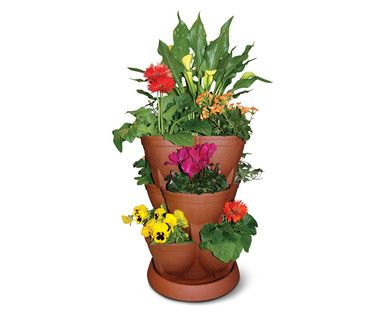 Will This Work As A Starberry Jar Gardening Garden Diy Home Flowers Roses Nature Landscaping Horticulture Tiered Planter Planters Flower Pots
