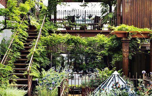 roof garden roofgarden garden