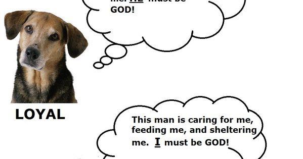 Pet logic