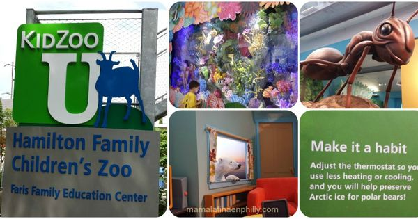 Zoologico De Philadelphia Family Education Arctic Ice Polar