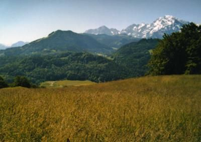 The Opening Scene Hill At Mehlweg In The Sound Of Music I Want To Stand Here Like Julie Andrews Did Sound Of Music Escape Plan Scene
