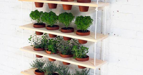 Indoor herb garden ideas gardens hanging herbs and for Jardin indoor