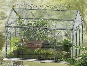 Antique Wardian Case Glass Terrariums By Park Designs 14 Wide