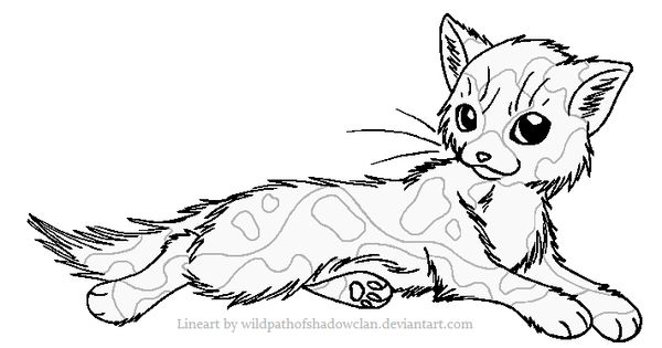 Longhaired Tortie F Lineart By Wildpathofshadowclan Coloring Book Pages Cat Character Coloring Books
