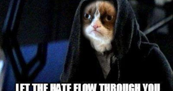 Emperor Grumpy Cat