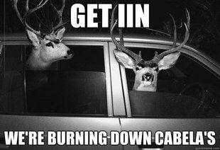Heaaaaaaaaaaad Shot Deer Lawd This Is Graphic Hunting Humor Hunting Jokes Funny