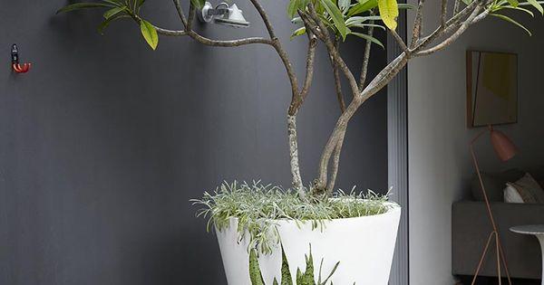 White large planter against black back drop planters garden - Claustra ontwerp pour terras ...