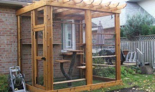 cat enclosure | Cat Porches | Pinterest | Cat, Cat houses