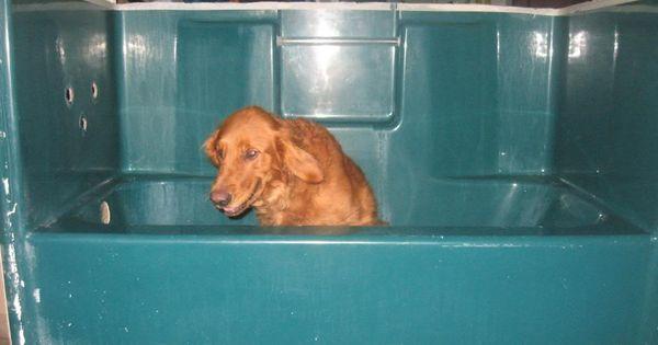 Building A Custom Elevated Dog Bathtub My Bday Present