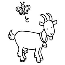 Top 25 Free Printable Goat Coloring Pages Online Farm Animal Coloring Pages Animal Coloring Pages Butterfly Coloring Page