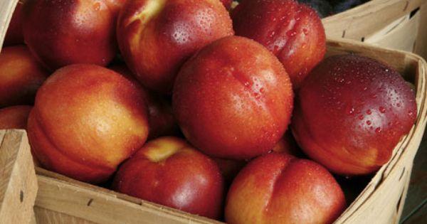 ... Desserts | Pinterest | Sorbet, Lemon and Lemon Verbena Recipes