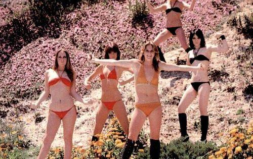 Rock N Roll Bikini
