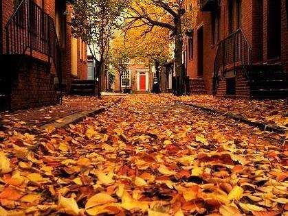 صور عن الخريف أجمل خلفيات عن فصل الخريف Photo Scenery Beautiful Fall