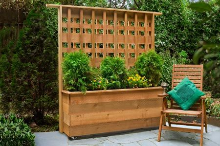 How To Build A Privacy Planter Privacy Planter Outdoor Gardens
