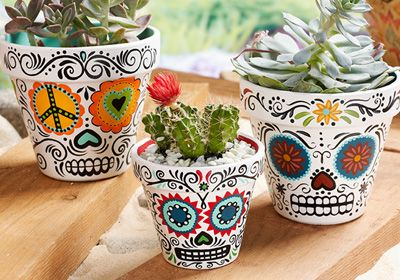 Daisy Eyes Sugar Skull Plant pots