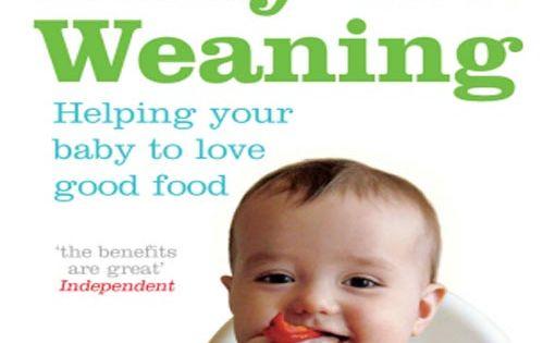 Babyled weaning en español