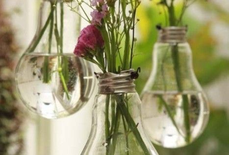 hanging light bulb flower vases