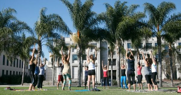 Yogi Get A Higher Education At Loyola Marymount University Yoga Practice Inspiration Lmu Essay Prompt