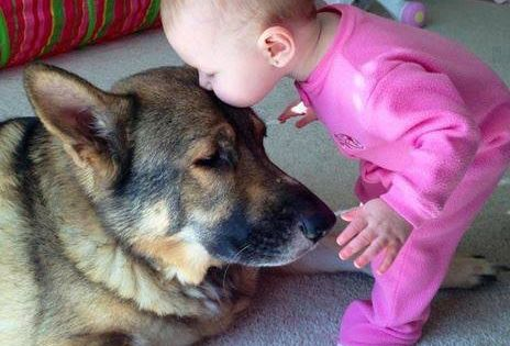 """Change the title to """"25 adorable photos that prove why children and"""