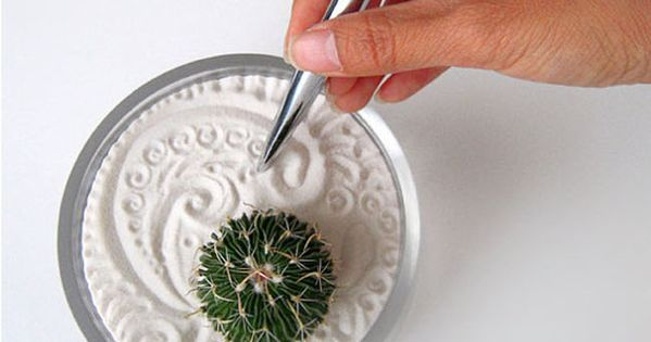 Sand art and cactus