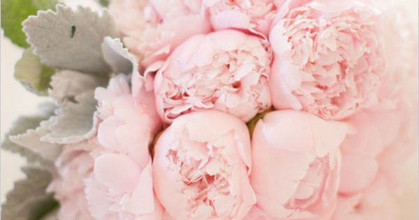 wedding flowers bridal bouquet | Pink Peony Wedding Bouquet - The Wedding
