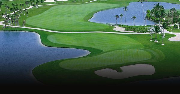 36++ Golf lessons tauranga info